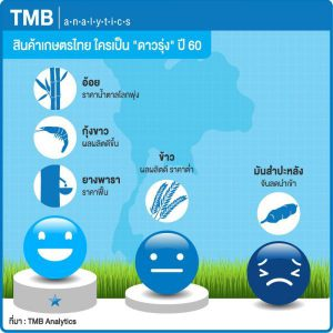 TMB Analytics