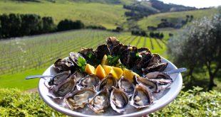หอยนางรมสดพร้อมเสิร์ฟใน-Te-Matuku-Oyster-Festiva