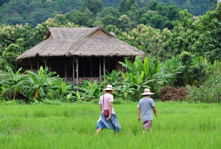 ลีซู ลอดจ์ (Lisu Lodge)