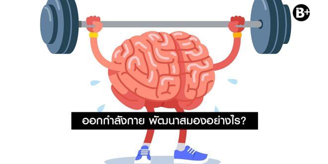 ออกกำลังกาย พัฒนาสมองอย่างไร?